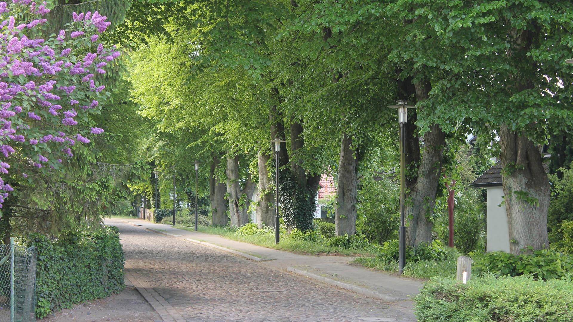 Mühlenstraße Hintergrund