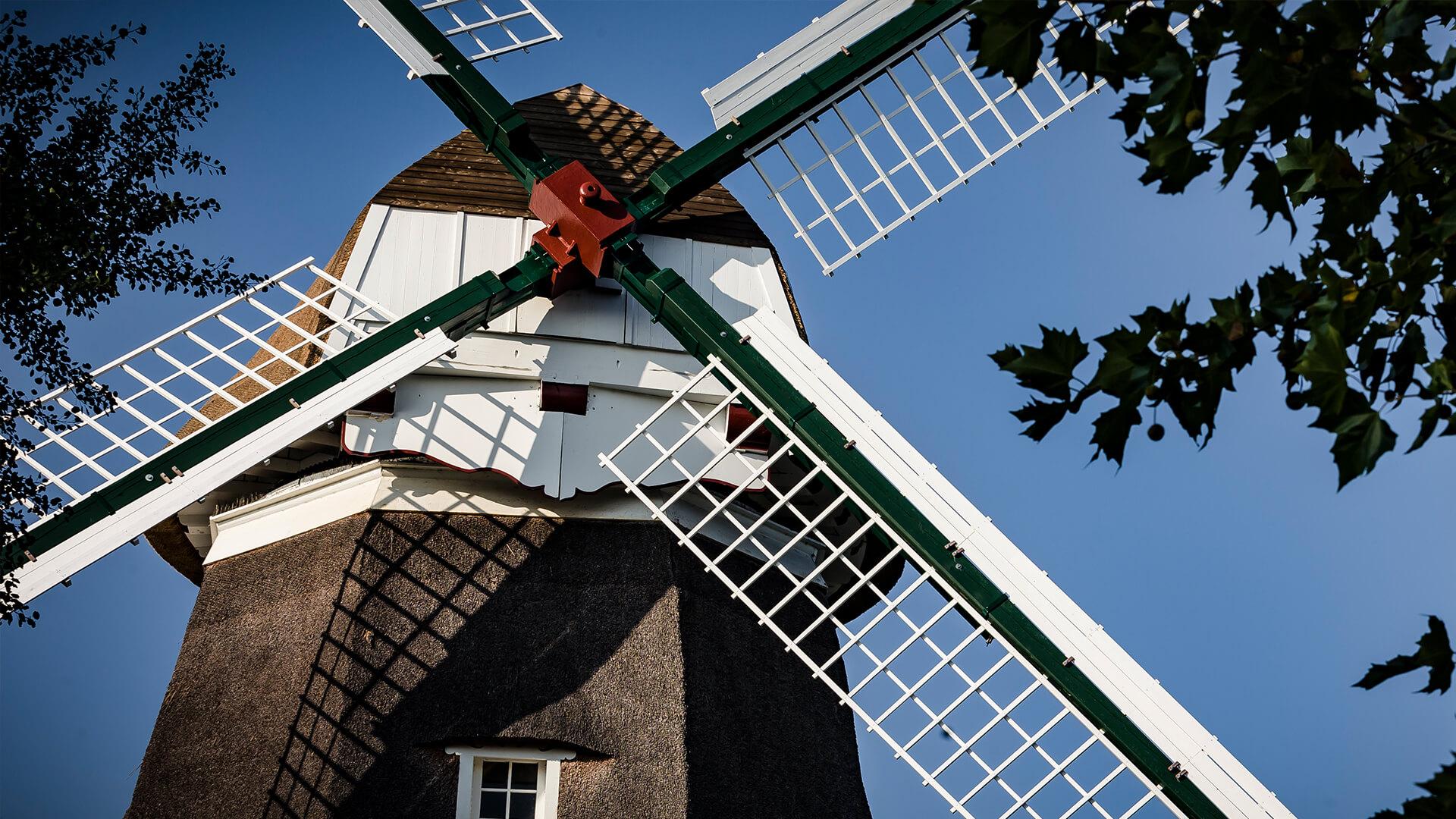 Mühle Freizeit